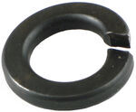 "Lockwasher for Brake Mounting Bolt for 7"" and 10"" Brake Assemblies"