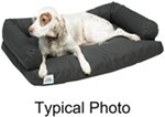 "Canine Covers Ultimate Dog Bed - Medium - Charcoal Black - 35"" x 25"""