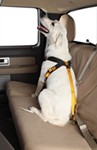 Ruff Rider Roadie Pet Harness and Vehicle Restraint System - Large