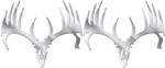 Big Rack Whitetail Skull Emblems - Stainless Steel - Qty 2