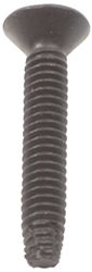 "1-1/2"" Long Standard Torx Trailer Floor and Wall Liner Screw"
