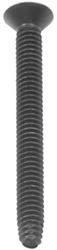 "2-1/2"" Long Standard Torx Trailer Floor and Wall Liner Screw"