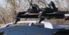 Honda Odyssey Ski and Snowboard Racks
