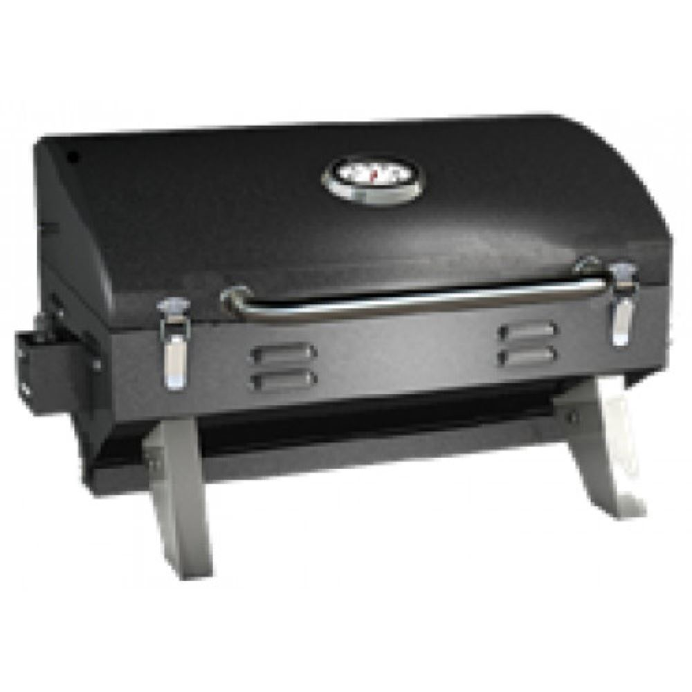 Portable Gas Grill With Carrying Bag