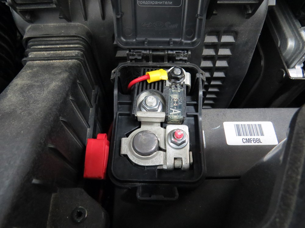 curt trailer wiring harness  | 1000 x 959
