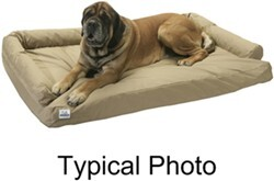 "Canine Covers Ultimate Dog Bed - Extra Large - Charcoal Black - 60"" x 36"""