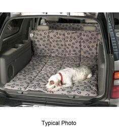Canine Covers 2007 Toyota Yaris Floor Mats