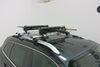 Rhino-Rack Ski and Snowboard Carrier - Locking - 6 Skis or 4 Boards 6 Pairs of Skis,4 Snowboards RR576