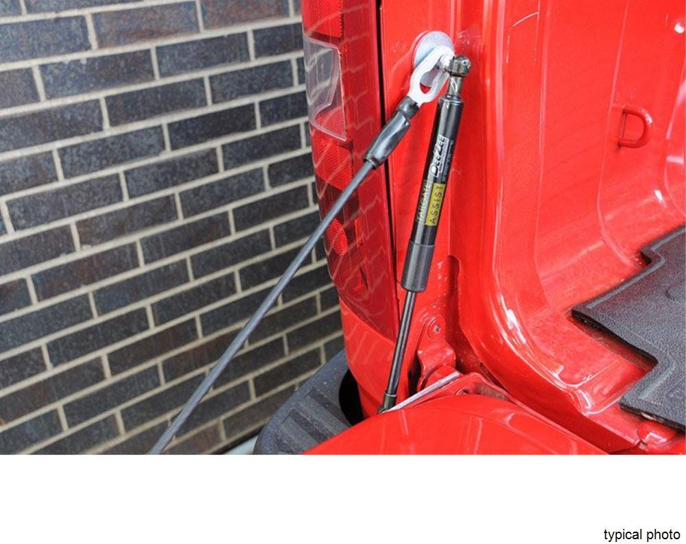 Tailgate Shock Assist for 2015 Chevy Silverado 1500  DZ43101